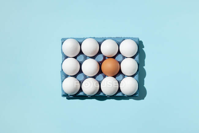 Eggs in paper tray on blue surface — Stock Photo