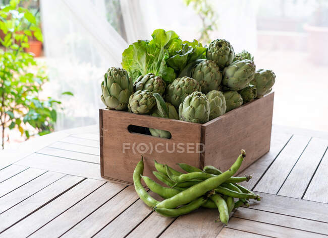 Delicious box of artichokes and lettuce seen from above — Stock Photo