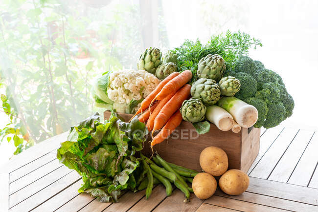 From above of harvest of various ripe vegetables placed in wooden box in garden — Stock Photo