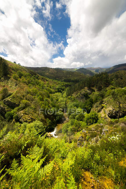 Green mountains under blue cloudy sky — Stock Photo