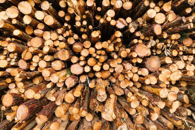 Tas de grumes fraîches, vue de face — Photo de stock