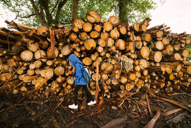 Side view of unrecognizable person in outerwear walking near pile of timber stacked in woods of Hoces del Esva — Stock Photo