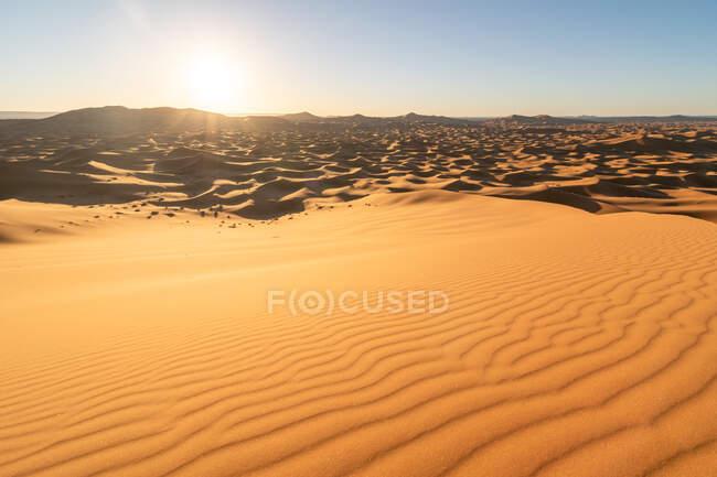 Tramonto sulle dune di sabbia del deserto in Marocco — Foto stock