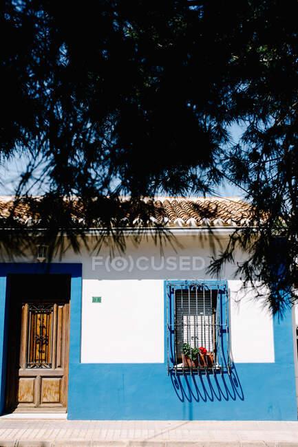 Fachada da casa com parede branca e azul e cerca de metal na janela com plantas em vasos com flores vermelhas florescendo na frente de galhos de árvores sob o céu azul — Fotografia de Stock