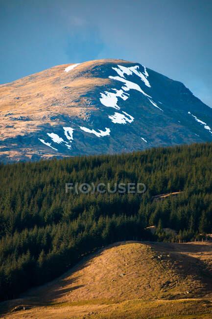 Вид на гору, вкритий снігом серед зелених пагорбів з лісом проти хмарного неба навесні в Шотландському нагір