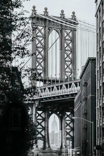 Szenischer Blick auf die Manhattan Bridge in New York City durch grüne Äste an nebligen Tagen — Stockfoto