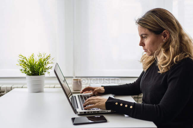 Side view of focused young female in casual outfit sitting at table with laptop and working online in light workplace at home — Stock Photo