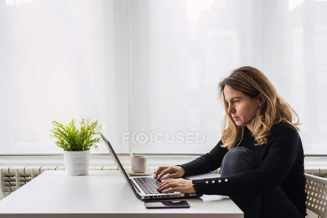Side view of focused female specialist in casual wear working with electronic documents on laptop while sitting at table near window in modern room at home — Stock Photo