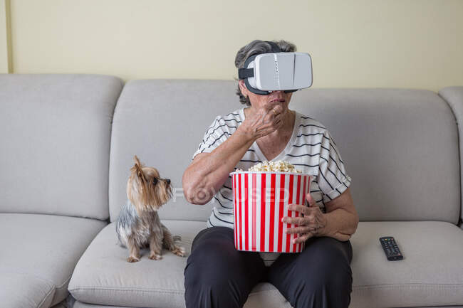 Señora anciana positiva en ropa casual viendo película en gafas de realidad virtual mientras tiene canasta de palomitas de maíz en cómodo sofá con perrito en casa - foto de stock