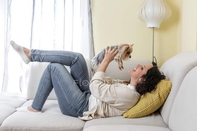Вид позитивной женщины в повседневной одежде, целующей собаку йоркширского терьера, отдыхая на удобном диване в гостиной дома — стоковое фото