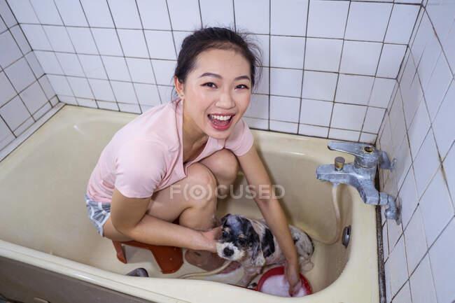 Dall'alto di etnico asiatico proprietario femminile seduto nella vasca da bagno e lavare carino Cocker Spaniel cucciolo a casa — Foto stock