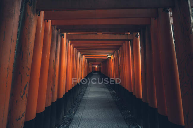Fushimi Inari Taisha with stone pathway surrounded by red Torii gates and illuminated by traditional lantern — Stock Photo