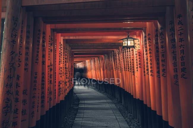 Fushimi Inari Taisha avec chemin de pierre entouré de portes rouges Torii et illuminé par une lanterne traditionnelle avec des gens lointains méconnaissables — Photo de stock