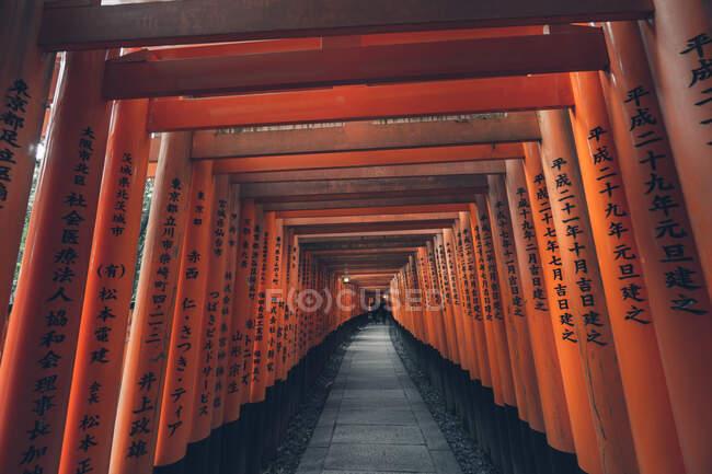 Fushimi Inari Taisha avec sentier en pierre entouré de portes rouges Torii et illuminé par une lanterne traditionnelle — Photo de stock