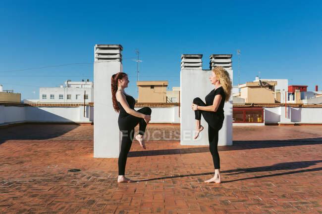 Сторона зору молодих і зрілих жінок у чорному спортивному манері, які роблять Стоячи на колінах під час занять йогою разом на даху міського будинку в сонячний день. — стокове фото