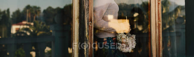 Cropped shot of female in cozy clothes standing near window holding hydrangea flower — Stock Photo