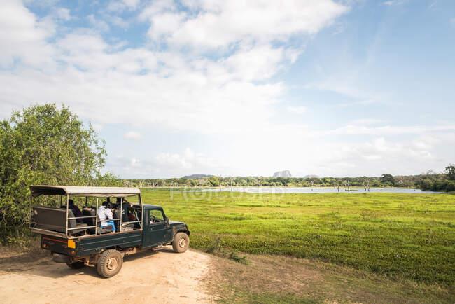 Gente sentada fuera de la carretera y observando animales en el prado verde en el parque tropical de Tissamaharama - foto de stock