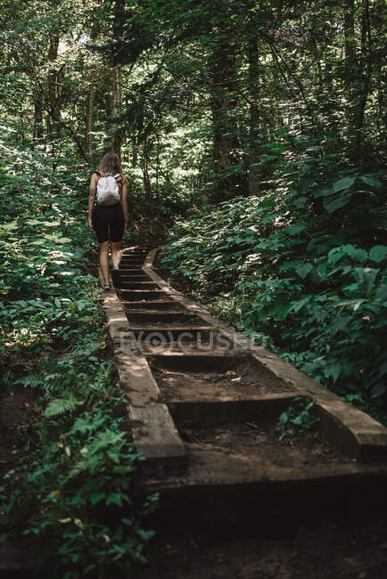 Woman with backpack walking up stairs on path and enjoying weather in green forest of La Mauricie National Park in Quebec, Canada — Stock Photo