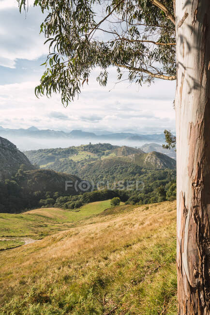 Vista panoramica sulla valle verde con alberi lussureggianti e alte colline che si trovano contro il cielo azzurro nuvoloso nella soleggiata giornata estiva — Foto stock