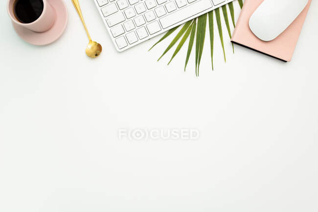 Top view of creative workspace with netbook and mug of hot espresso placed on palm leaf — Stock Photo