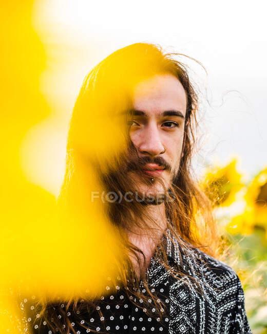 Heiterer, emotionsloser Hipster-Rüde mit langen Haaren steht in gelbem Sonnenblumenfeld und blickt in die Kamera — Stockfoto