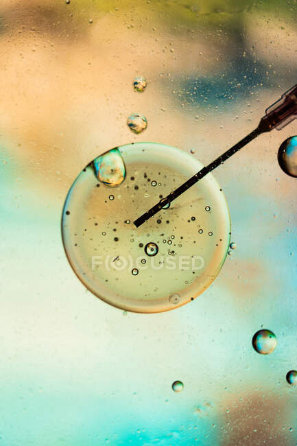 Закриття голки шприца, наповненого вакциною від вірусу, інфікованого в клітині на розмитому тлі. — стокове фото