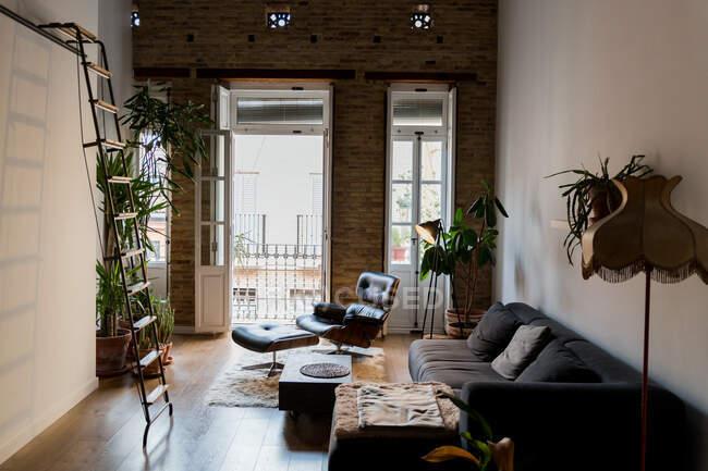 Внутрішня частина вітальні з зеленими потовщеними рослинами і зручний диван у плоскій формі — стокове фото