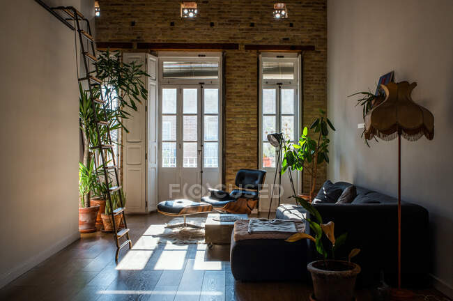 Intérieur du salon avec plantes vertes en pot et canapé confortable dans le style loft — Photo de stock