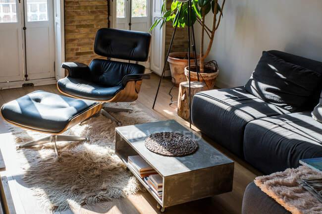 Интерьер гостиной с зелеными растениями в горшке и удобный диван в квартире в мансарде — стоковое фото