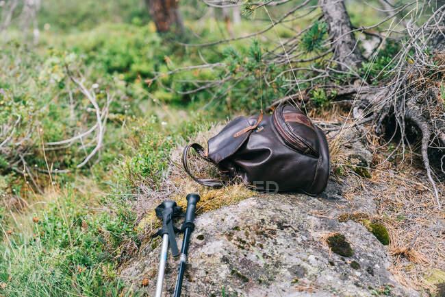 Zaino donna in pelle e bastoni da passeggio posti su pietra in rigogliosi boschi erbosi durante il trekking — Foto stock