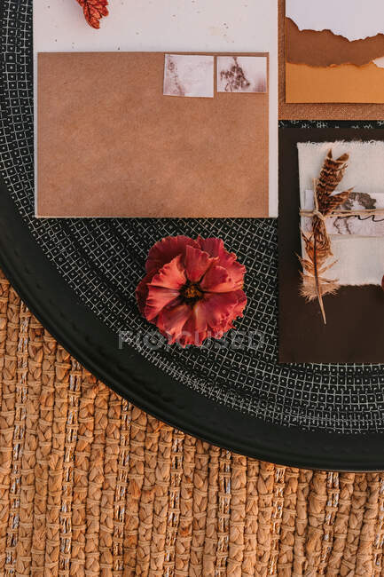 Top view of white greeting cards placed on black round tray with bright plants on wicker surface during wedding celebration — Stock Photo