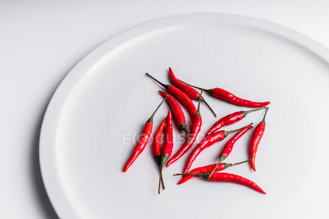 Hoch gewinkelte Zusammensetzung scharfer roter Chilischoten auf Keramikteller vor weißem Hintergrund angeordnet — Stockfoto