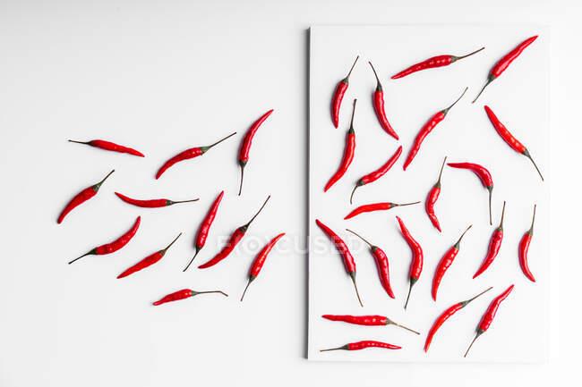 Високий кут композиція гарячого червоного перцю чілі аранжував пластину на тлі білої дошки. — стокове фото