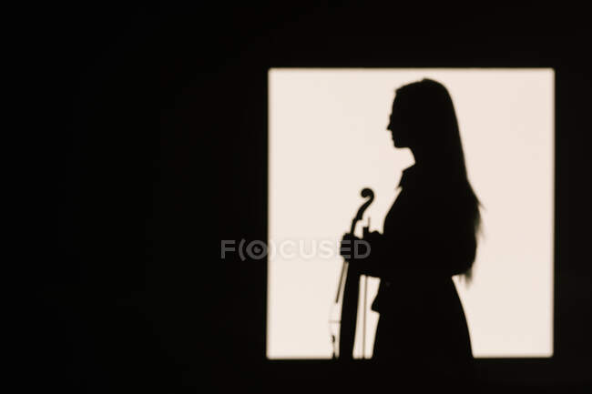 Side view silhouette female violinist standing with musical instrument and thoughtfully looking away — Stock Photo