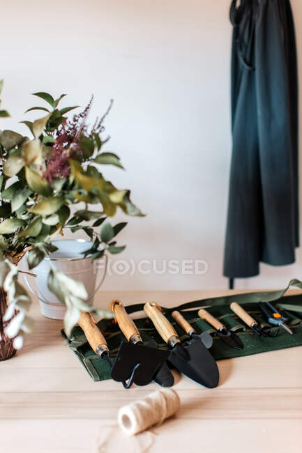 Assorted metal trowels with hoe and gardening fork near vase with plant at home — Stock Photo