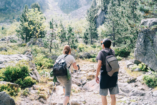 Back view of anonymous backpackers walking on mountain during summer trip - foto de stock