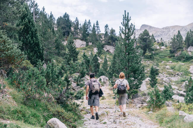Back view of anonymous backpackers walking on mountain during summer trip — Stock Photo