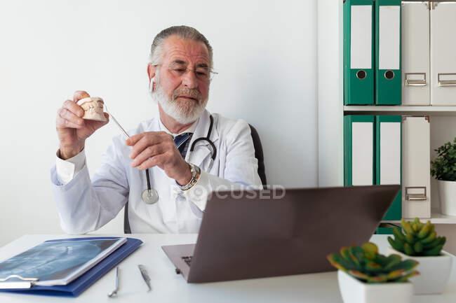 Hombre mayor ortodoncista mostrando yeso de mandíbula mientras habla contra netbook durante el chat de vídeo en la mesa en el hospital - foto de stock