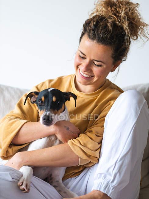 Веселая женщина с вьющимися волосами, случайная одежда сидит с послушным Ратонеро Бодегуэро Андалуз собака на диване в светлой квартире — стоковое фото