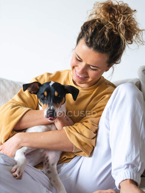 Cheerful woman with curly hair an casual clothes sitting with obedient Ratonero Bodeguero Andaluz dog on sofa in light apartment — Stock Photo