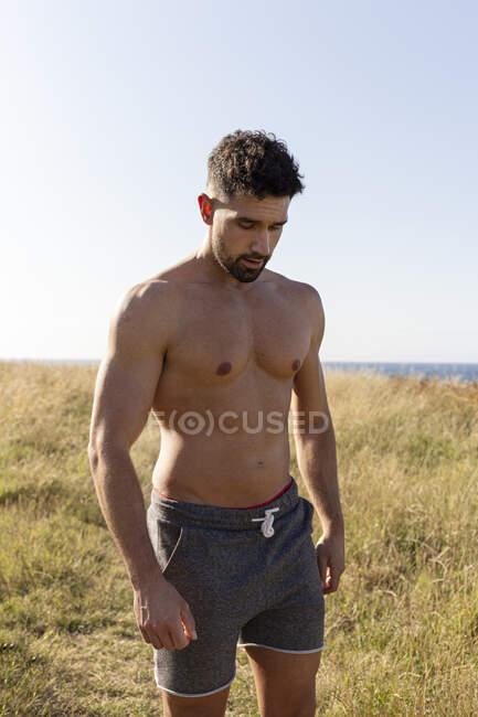 Deportista masculino determinado con fuerte torso desnudo de pie en la colina cubierta de hierba en el día soleado en verano y mirando hacia abajo - foto de stock