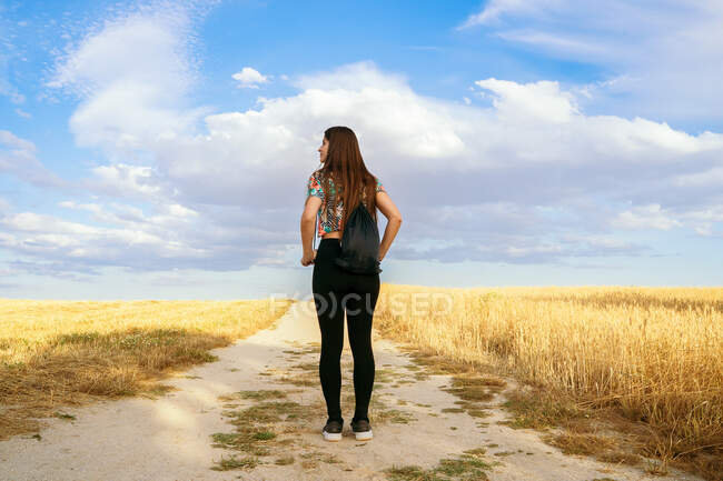 Вид сзади на содержательную женщину, стоящую на песчаной дороге в поле весной и наслаждающуюся природой, отводя взгляд — стоковое фото
