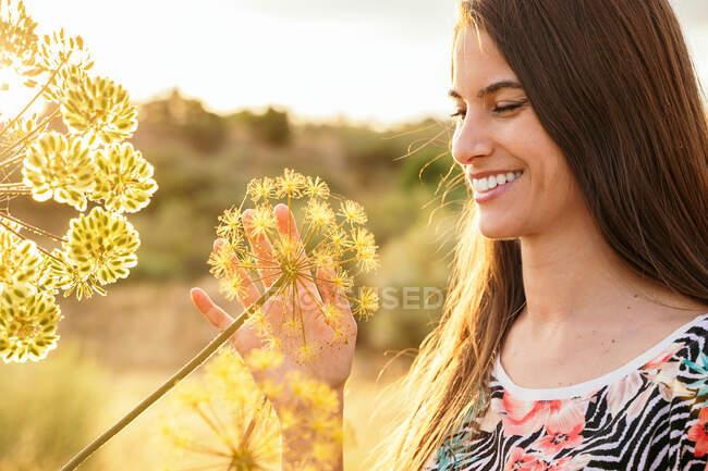 Felice femmina delicatamente toccante giardino angelica pianta in campo al tramonto in primavera — Foto stock