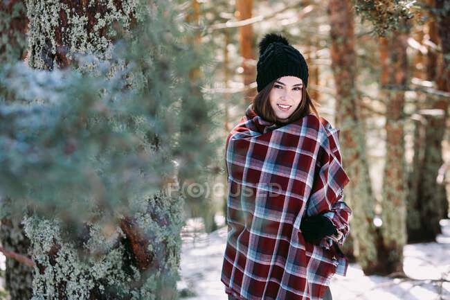 Contenuto femminile avvolto in caldo plaid in piedi in boschi innevati e guardando la fotocamera — Foto stock