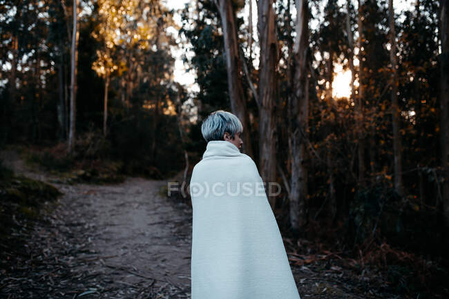 Back view of anonymous female with short hair covered with white blanket strolling on rural path in woods on evening time — стоковое фото