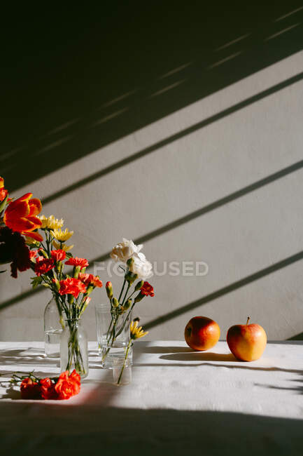 Glass vases with blooming tulips and carnations placed on table near apples with shadow in a wall — Stock Photo