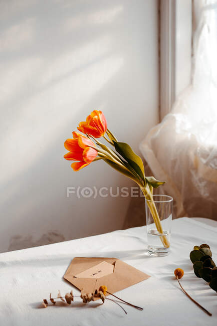 Tulipani fioriti in acqua posti su tovaglia bianca vicino a busta e finestra aperte — Foto stock