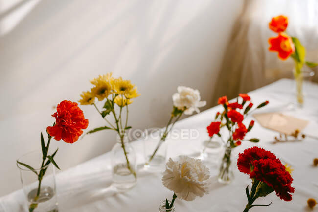 Glasses of fresh tulips and carnations in water placed on table for making bouquets — Stock Photo