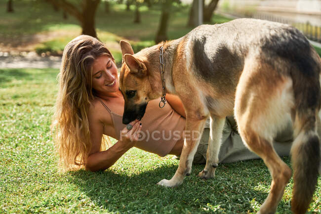 Side view of positive female owner sitting near German Shepherd dog giving paw while training commands in park — Stock Photo