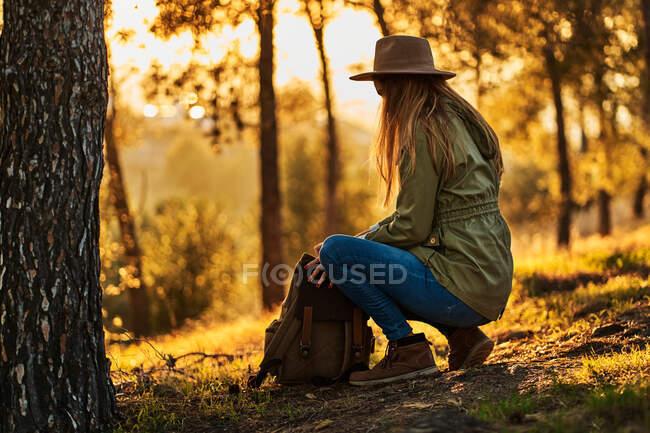 Vista laterale a tutta lunghezza serena irriconoscibile giovane femmina in abbigliamento casual e cappello accovacciato e zaino di apertura pur avendo pausa in boschi verdeggianti al tramonto — Foto stock